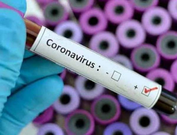 COVID-19: 2 positivos, 8 negativos y más recuperados en Pringles