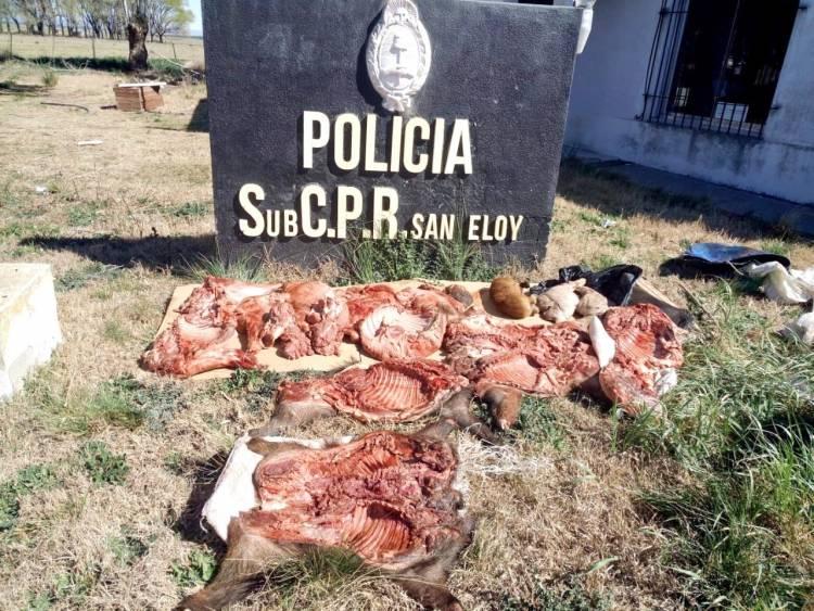 POLICIALES: Infraccionaron a pringlenses con 170 kilos de carne de jabalí