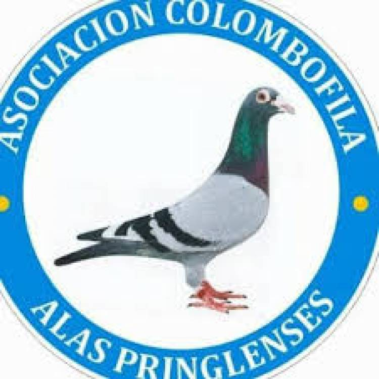 Colombófilas